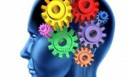 Возбуждение нервной системы