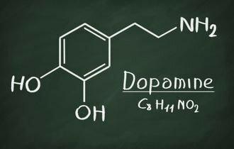 Гормон дофамин — наркотик, встроенный в тело человека