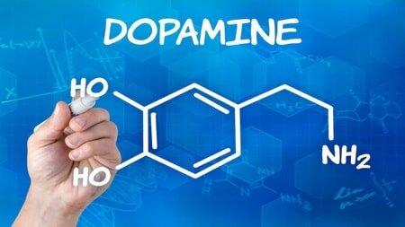 Древний гормон дофамин — причина любой зависимости.